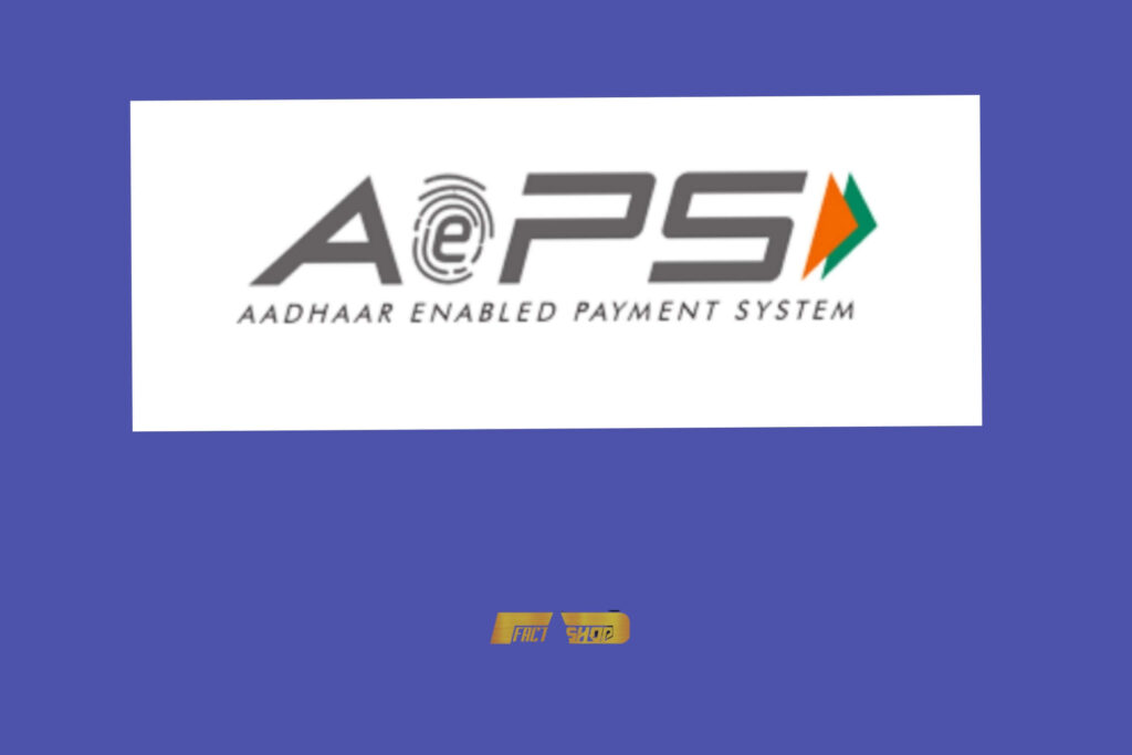 Aadhaar Enabled Payment System APES in Hindi